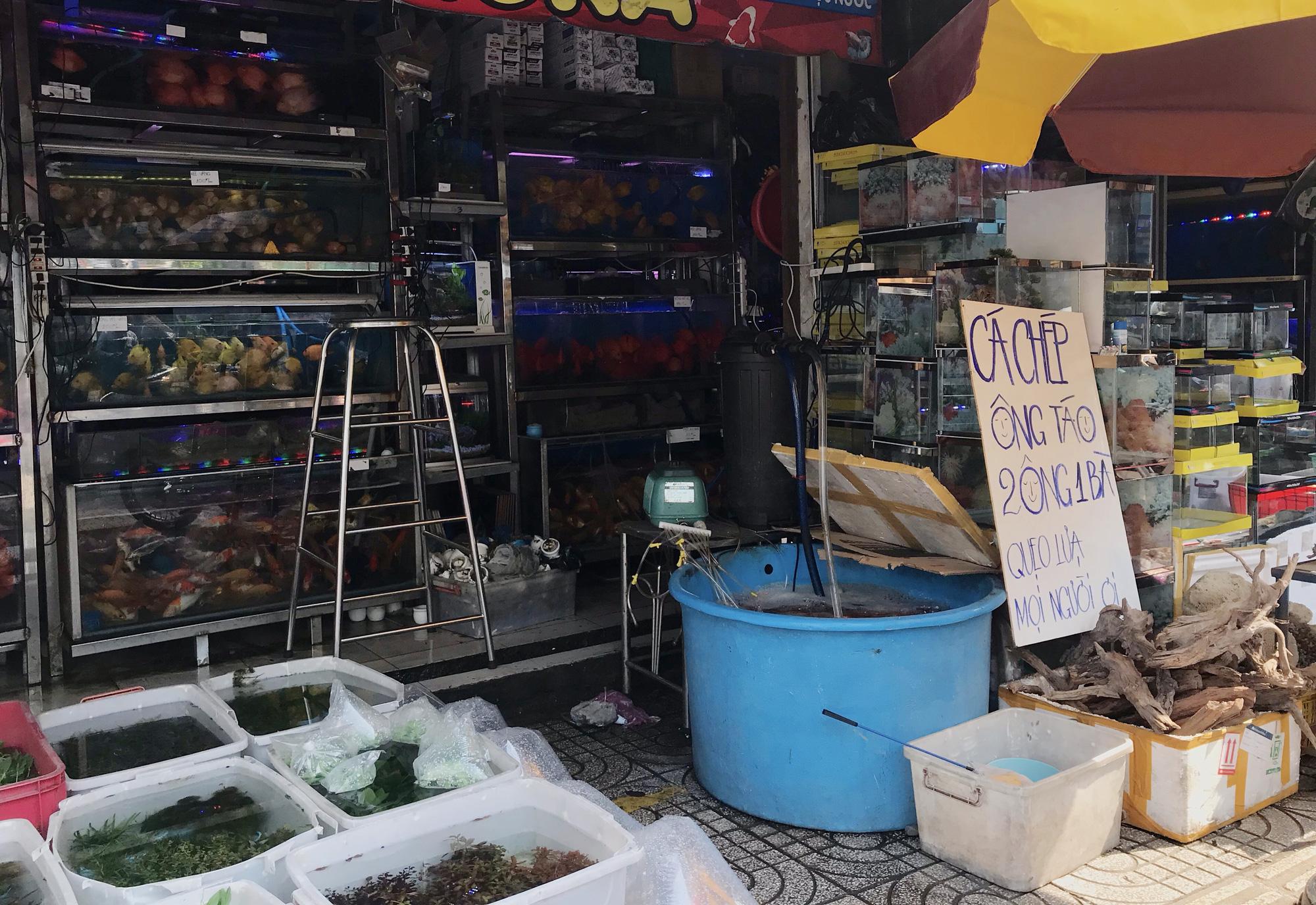 Người Sài Gòn tranh thủ sắm đồ cúng ông Công, ông Táo: Vàng mã hốt bạc, cá chép đìu hiu - Ảnh 13.