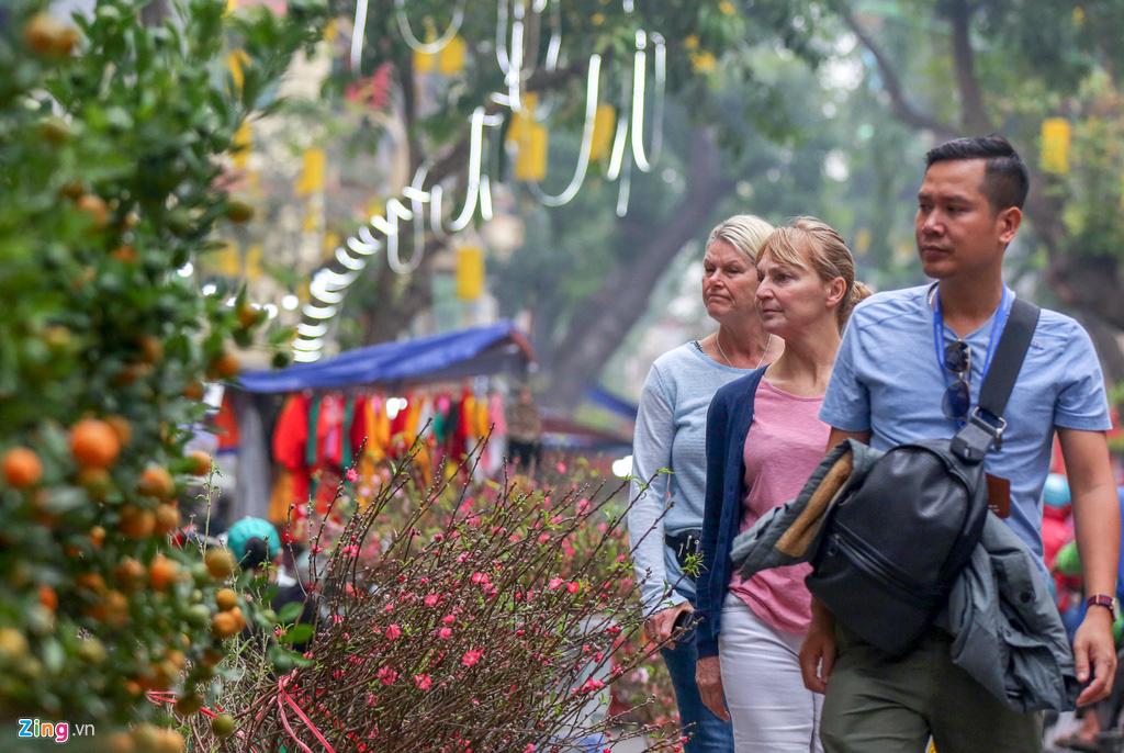 Cây mai trăm tuổi giá đắt ngang căn chung cư cao cấp ở Hà Nội - Ảnh 11.