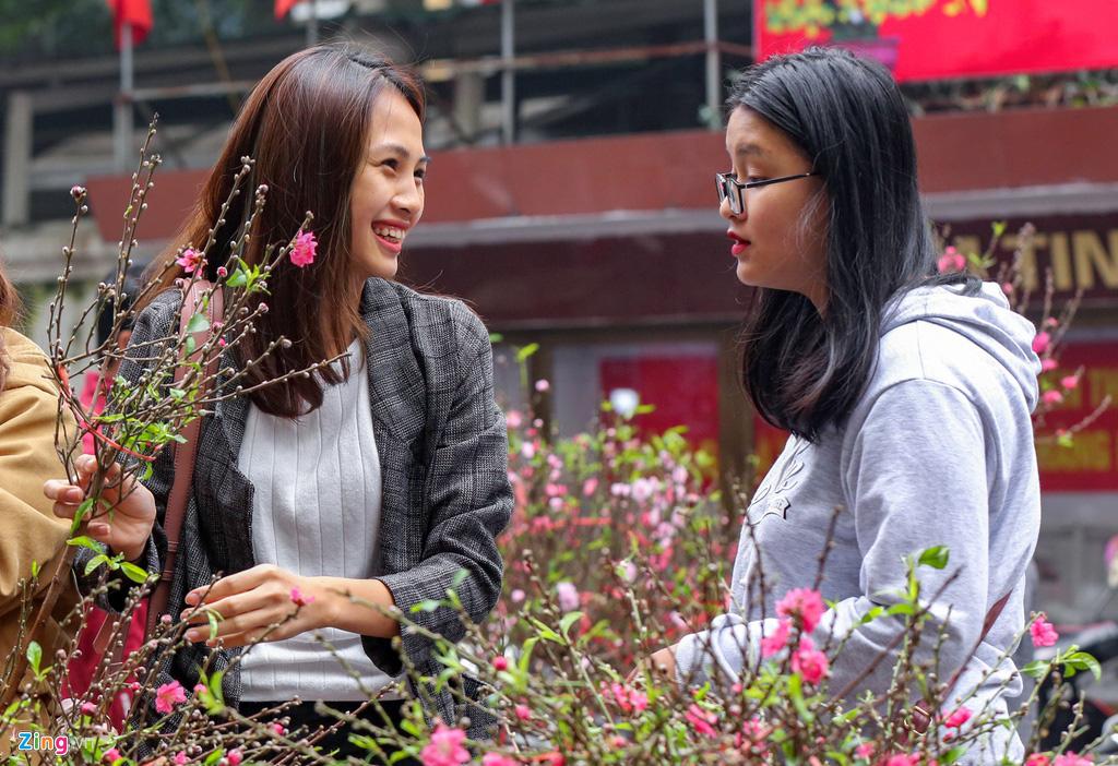 Cây mai trăm tuổi giá đắt ngang căn chung cư cao cấp ở Hà Nội - Ảnh 1.