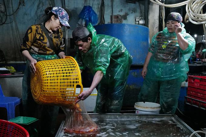 Chợ đầu mối xuyên đêm bán cá chép đỏ - Ảnh 8.