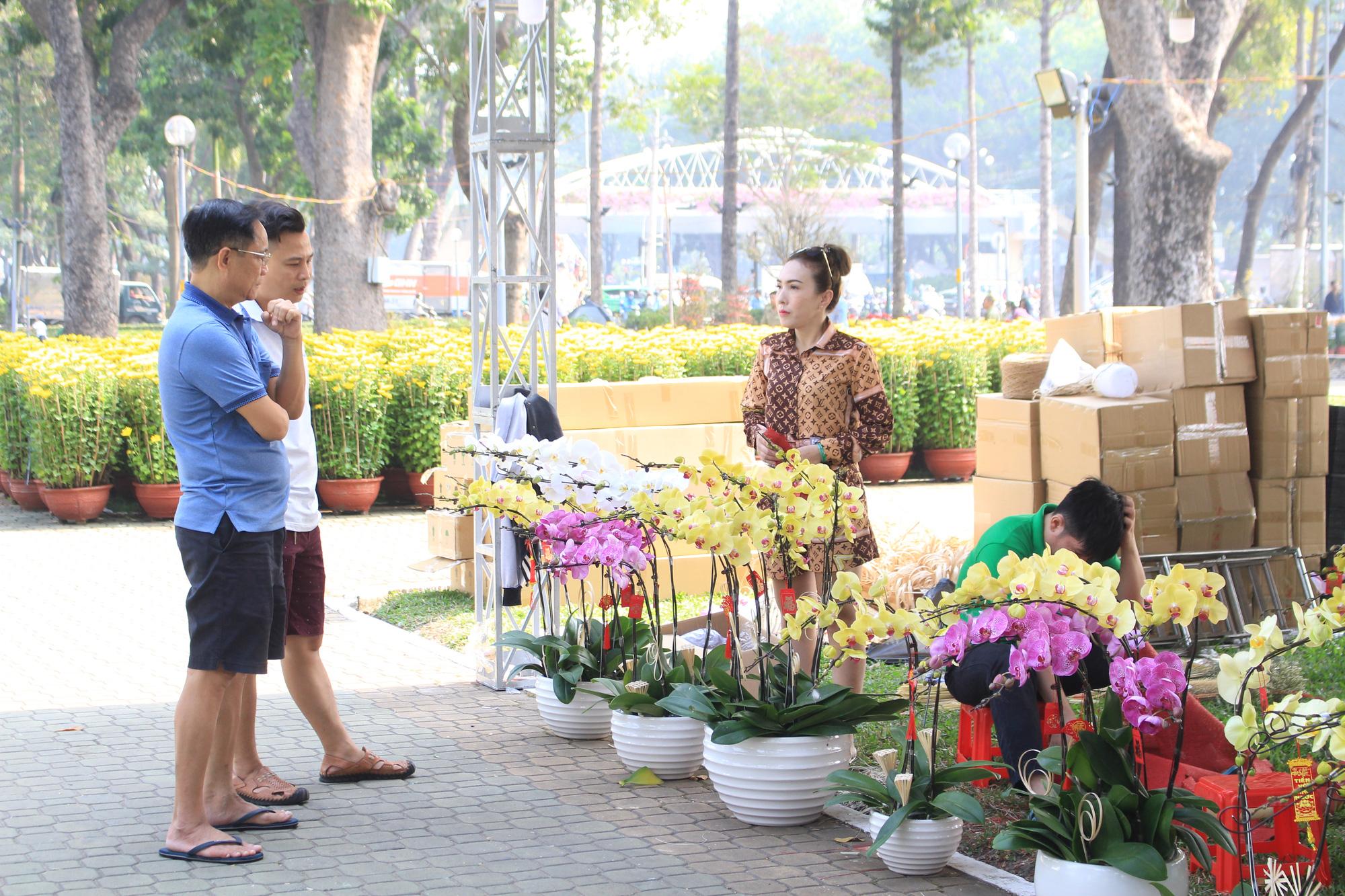 Mai Sài Gòn ồ ạt ra chợ, đi máy bay ra Hà Nội, sang Campuchia với giá hàng chục triệu đồng - Ảnh 10.
