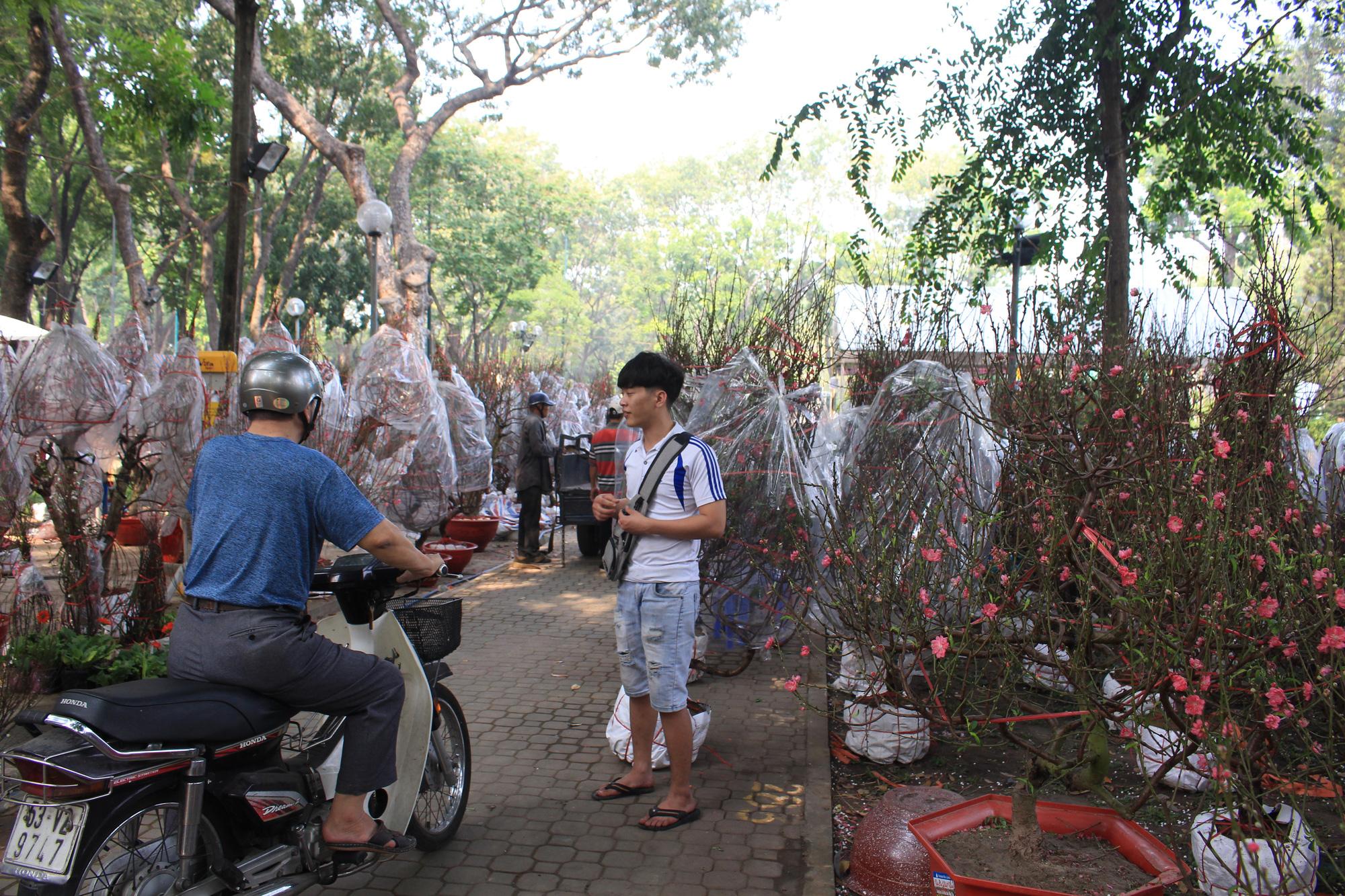 Đào Nhật Tân giá hàng chục triệu đồng đổ về Sài Gòn chơi Tết - Ảnh 3.