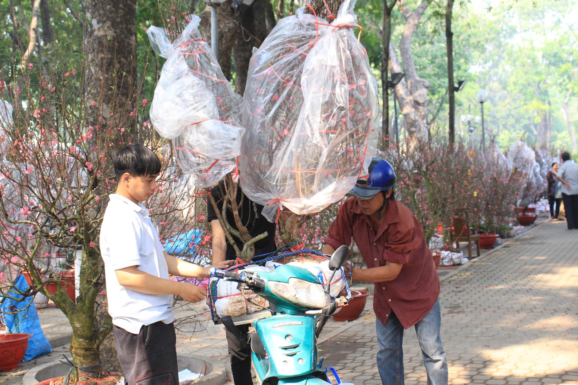 Hoa cảnh cả nước, đào Nhật Tân giá hàng chục triệu đồng đổ về Sài Gòn - Ảnh 6.