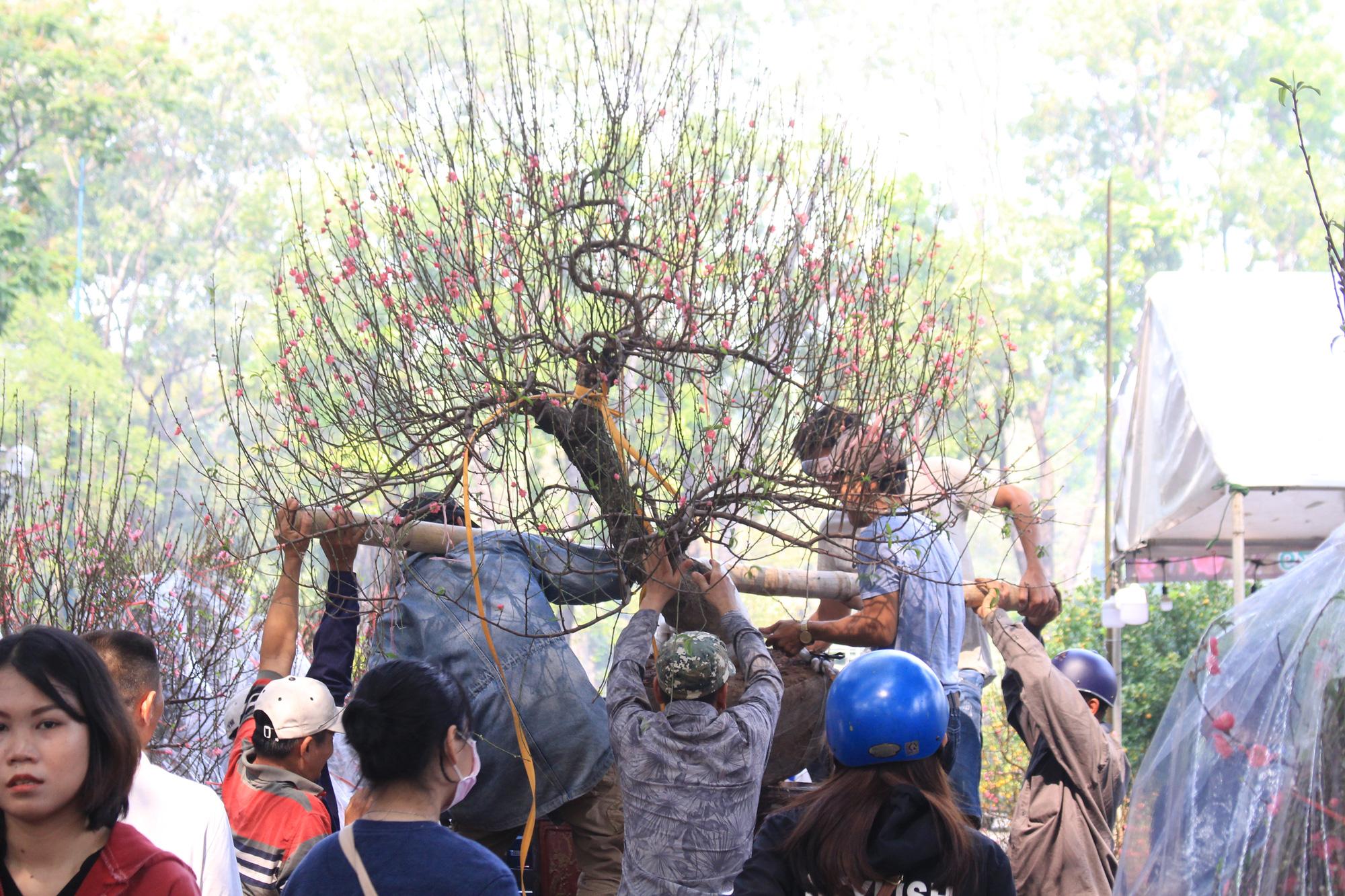 Đào Nhật Tân giá hàng chục triệu đồng đổ về Sài Gòn chơi Tết - Ảnh 11.