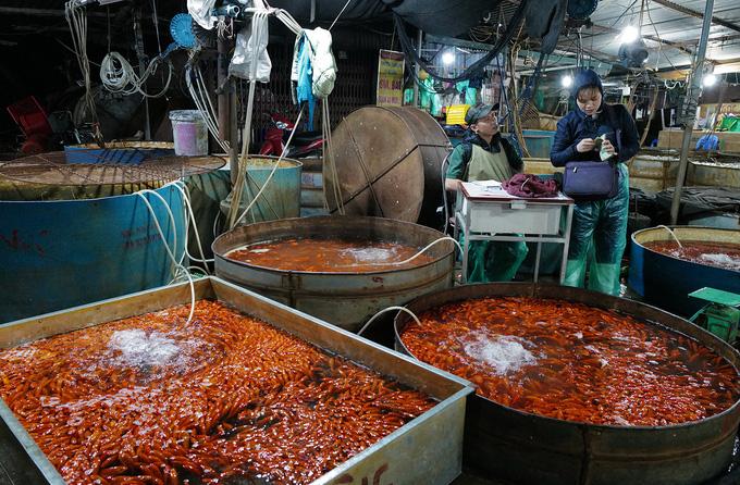 Chợ đầu mối xuyên đêm bán cá chép đỏ - Ảnh 5.
