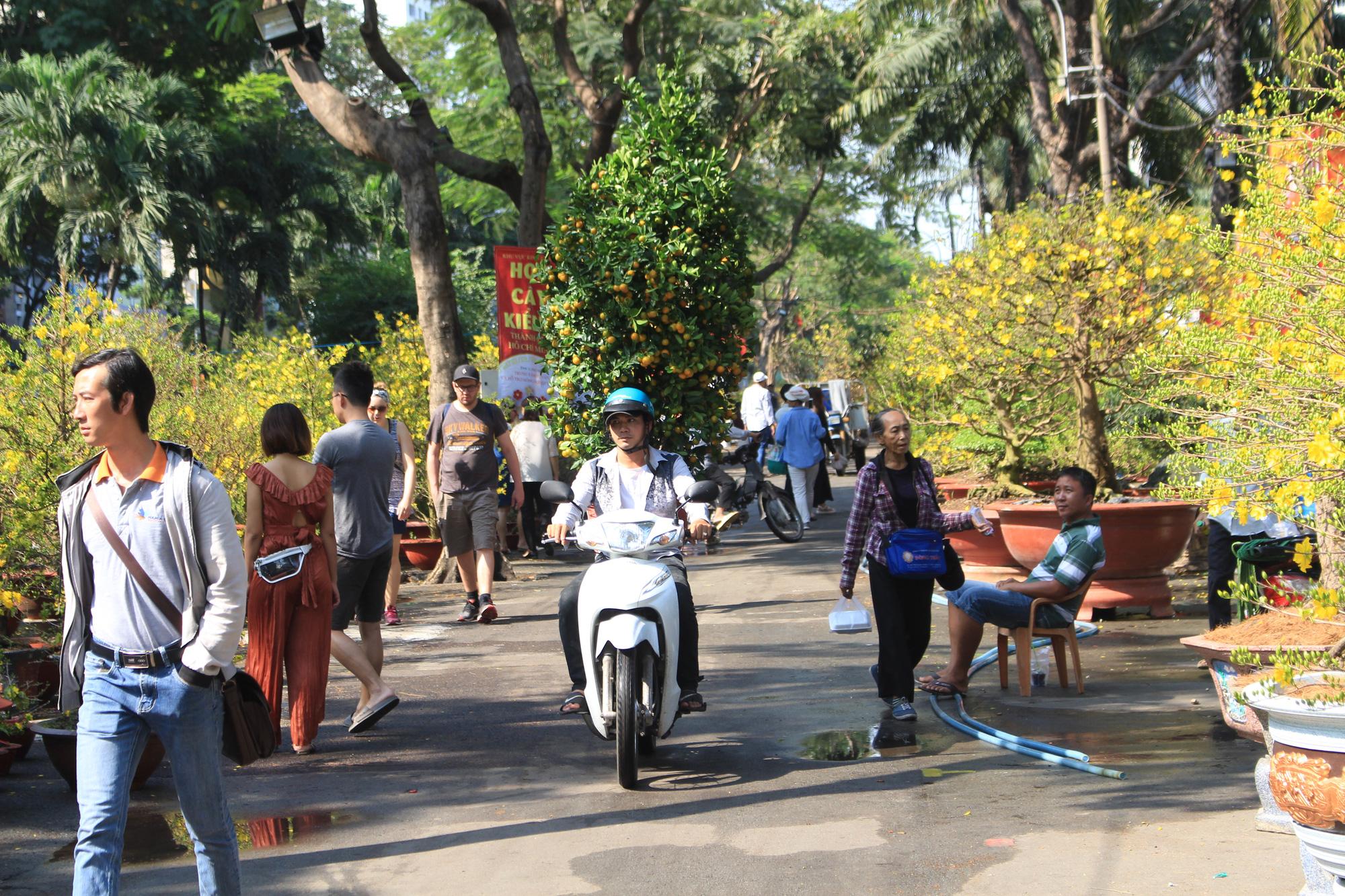 Mai, đào, tắc tiền triệu tại chợ hoa Sài Gòn ngóng người mua, có nhà vườn treo biển đồng giá 100.000 đồng mỗi chậu - Ảnh 1.