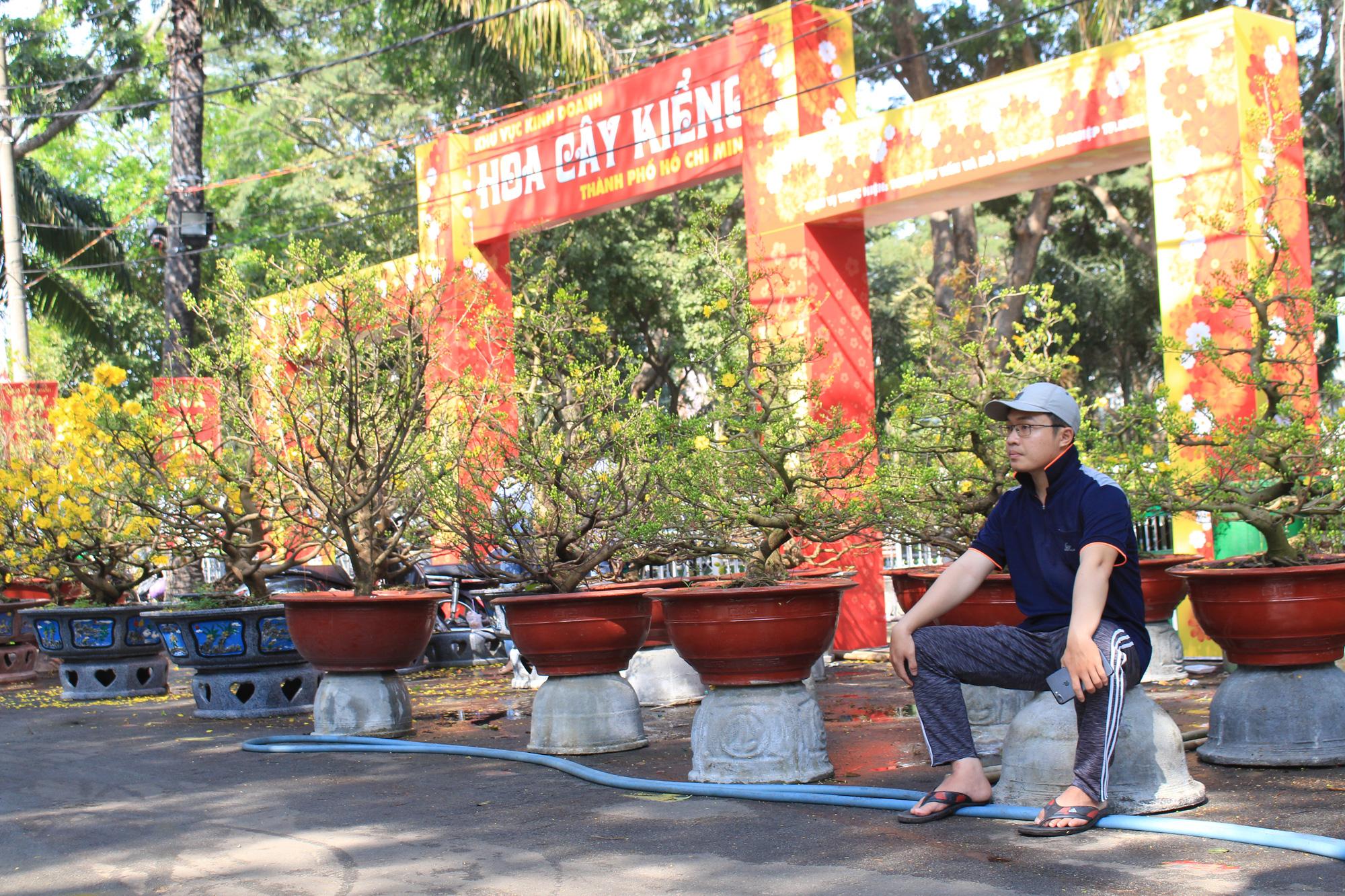 Mai, đào, tắc tiền triệu tại chợ hoa Sài Gòn ngóng người mua, có nhà vườn treo biển đồng giá 100.000 đồng mỗi chậu - Ảnh 4.