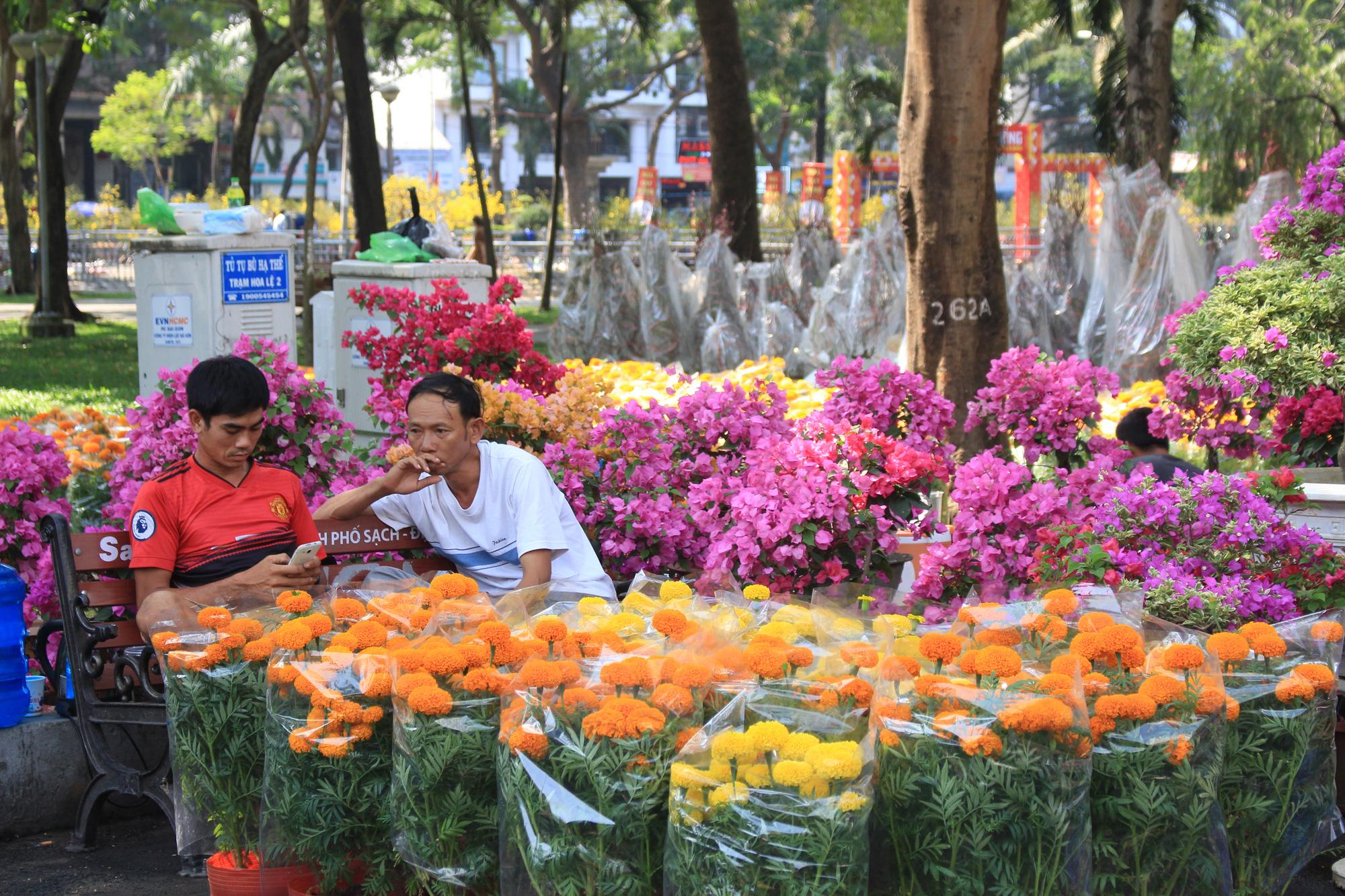 Mai, đào, tắc tiền triệu tại chợ hoa Sài Gòn ngóng người mua, có nhà vườn treo biển đồng giá 100.000 đồng mỗi chậu - Ảnh 2.