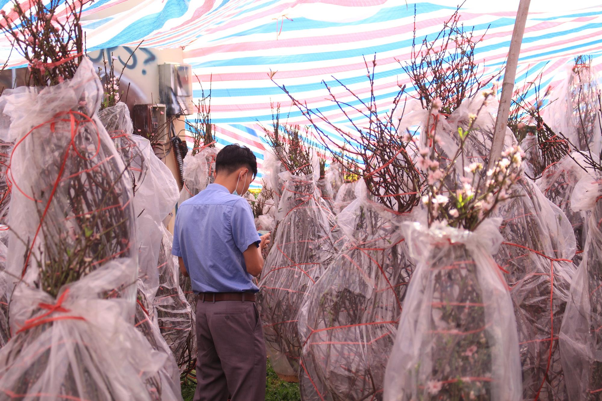 28 Tết, đào Nhật Tân tại chợ hoa Sài Gòn bắt đầu giảm giá, thuận mua vừa bán nên hút khách - Ảnh 6.