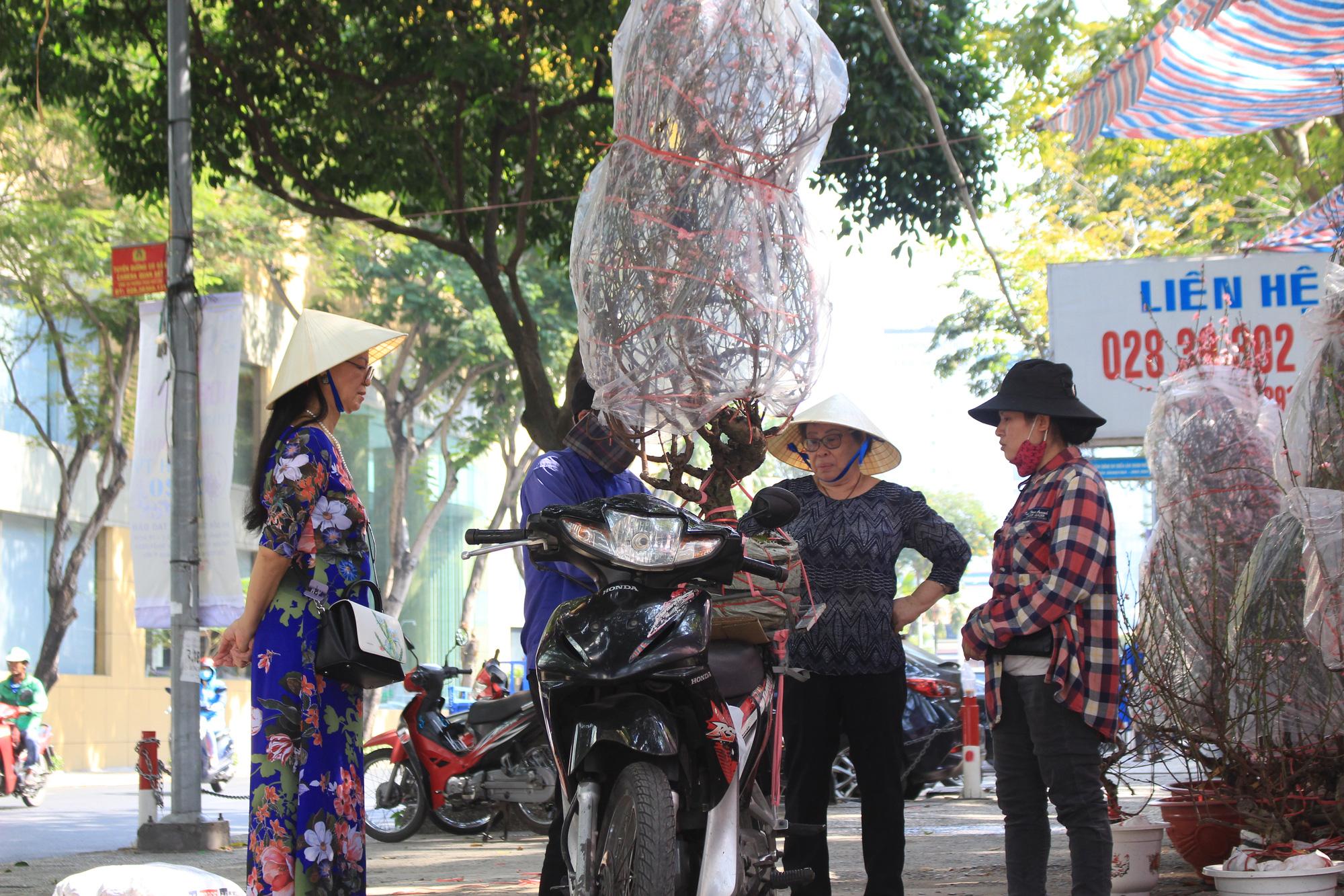 Mai, đào, tắc tiền triệu tại chợ hoa Sài Gòn ngóng người mua, có nhà vườn treo biển đồng giá 100.000 đồng mỗi chậu - Ảnh 6.