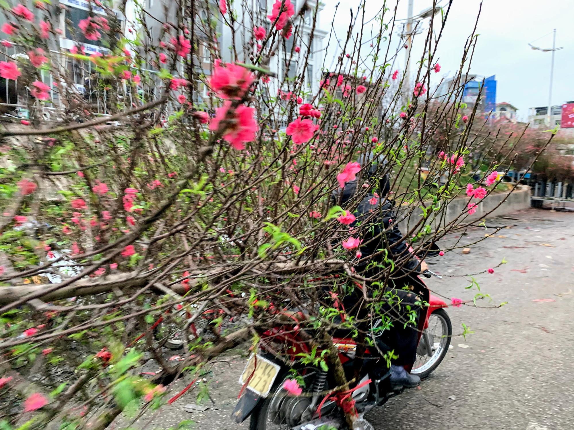 Chiều cuối năm, đột nhập chợ hoa xuân xem người Hà Nội sắm Tết - Ảnh 5.