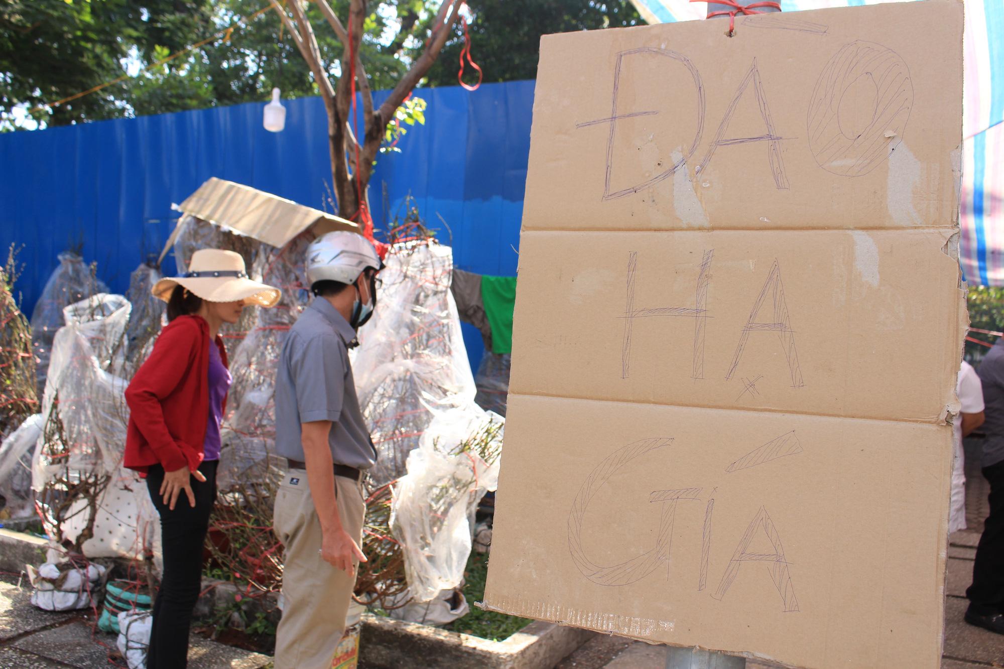 28 Tết, đào Nhật Tân tại chợ hoa Sài Gòn bắt đầu giảm giá, thuận mua vừa bán nên hút khách - Ảnh 4.