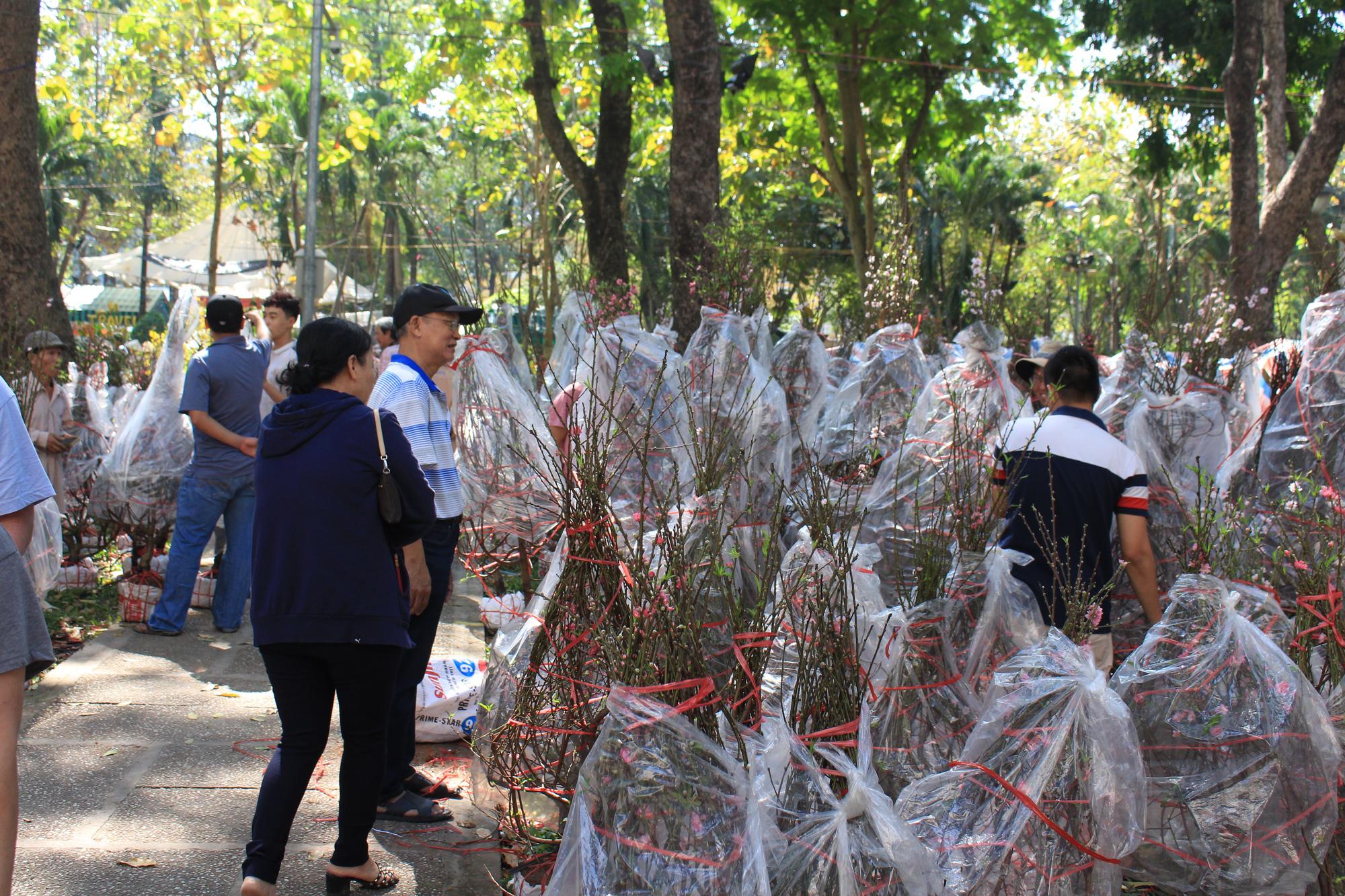 28 Tết, đào Nhật Tân tại chợ hoa Sài Gòn bắt đầu giảm giá, thuận mua vừa bán nên hút khách - Ảnh 1.