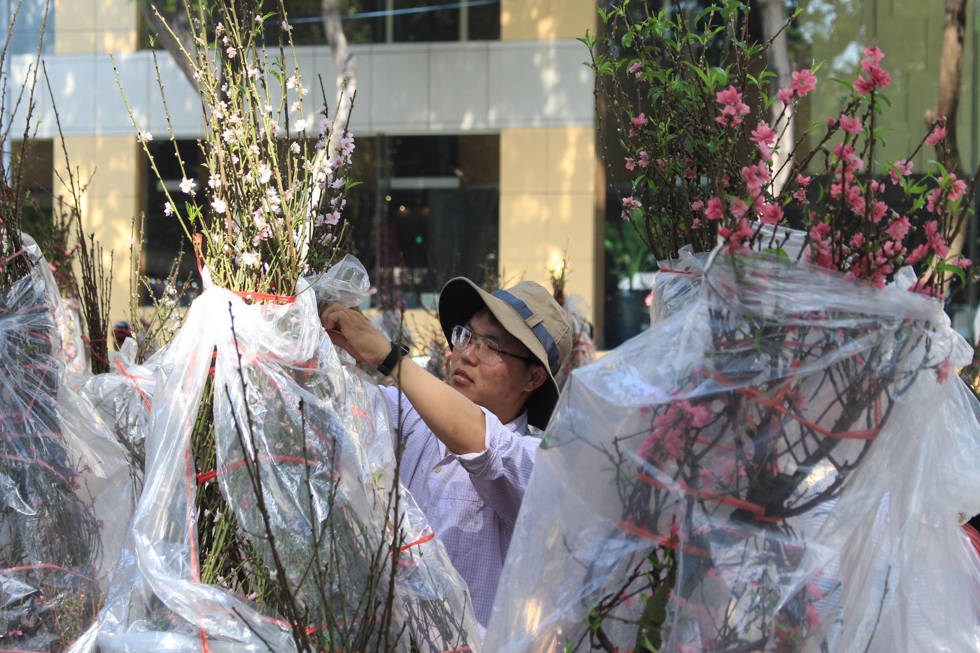 28 Tết, đào Nhật Tân tại chợ hoa Sài Gòn bắt đầu giảm giá, thuận mua vừa bán nên hút khách - Ảnh 8.