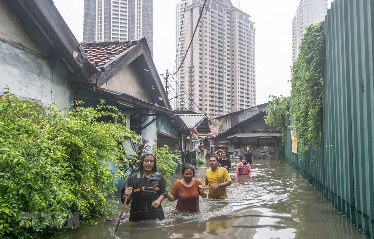 Cảnh báo hàng triệu người sẽ phải đi tị nạn do biến đổi khí hậu - Ảnh 1.