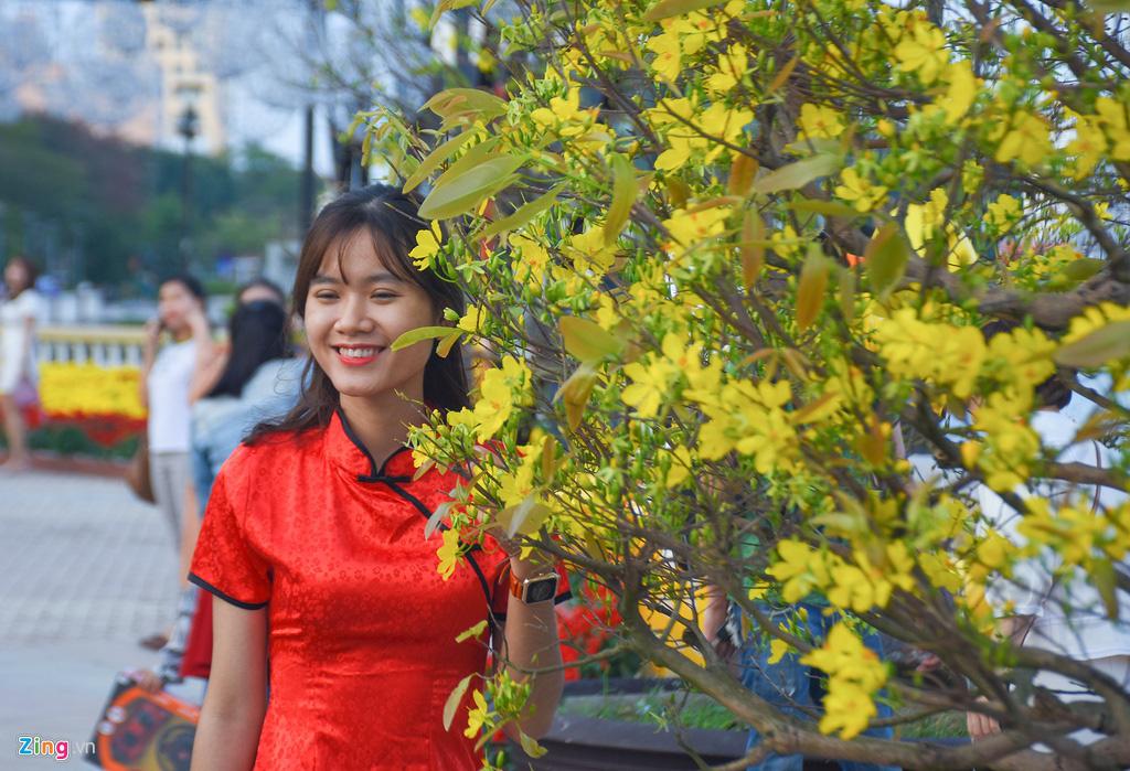 Ngắm đường hoa hơn 6 tỉ ở Đà Nẵng - Ảnh 12.