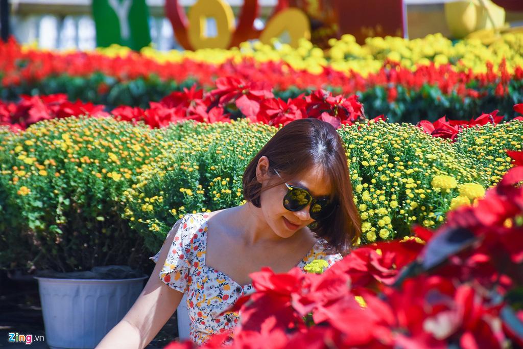 Ngắm đường hoa hơn 6 tỉ ở Đà Nẵng - Ảnh 13.
