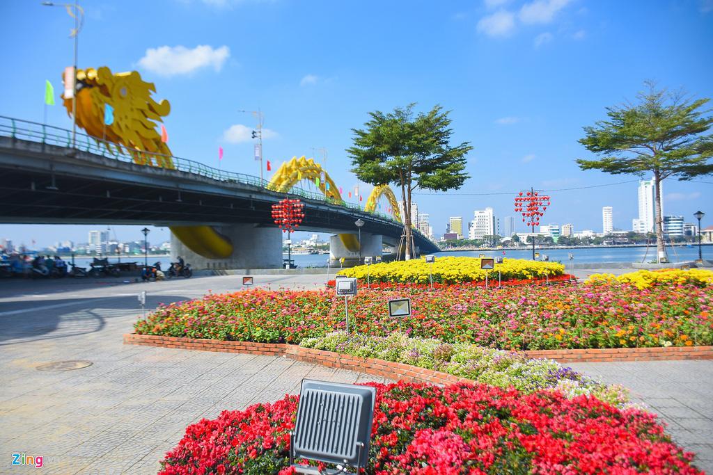 Ngắm đường hoa hơn 6 tỉ ở Đà Nẵng - Ảnh 2.