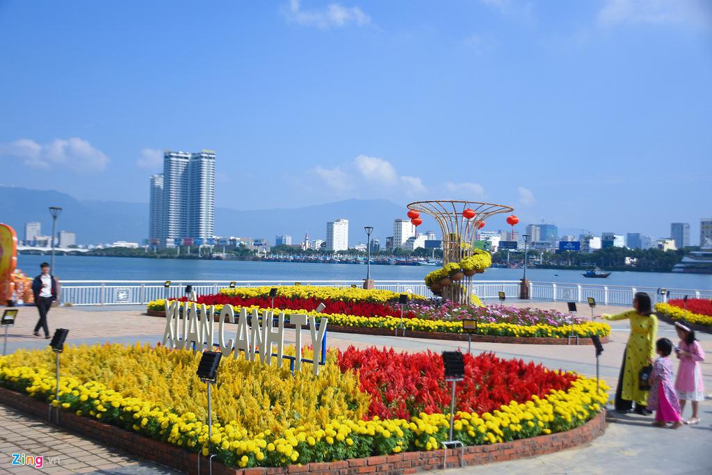 Ngắm đường hoa hơn 6 tỉ ở Đà Nẵng - Ảnh 3.