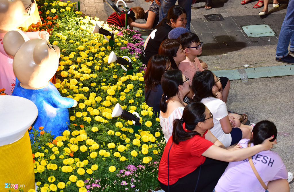 Biển người chen nhau chụp hình ở đường hoa Nguyễn Huệ - Ảnh 15.