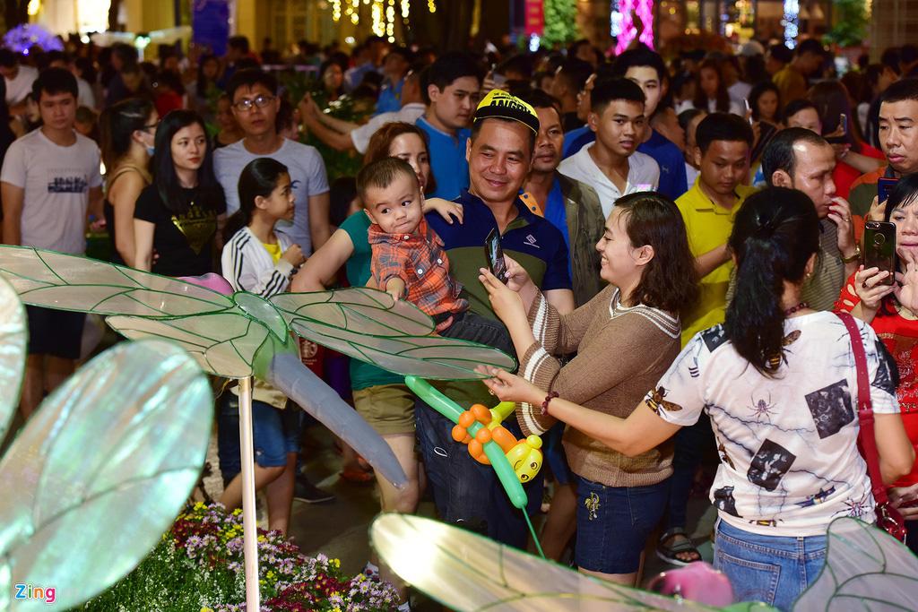 Biển người chen nhau chụp hình ở đường hoa Nguyễn Huệ - Ảnh 6.