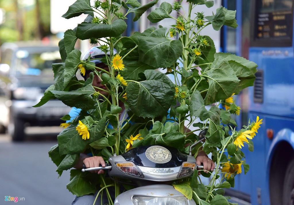 Đổ xô mua hoa Tết đại hạ giá ở trung tâm TP.HCM - Ảnh 15.
