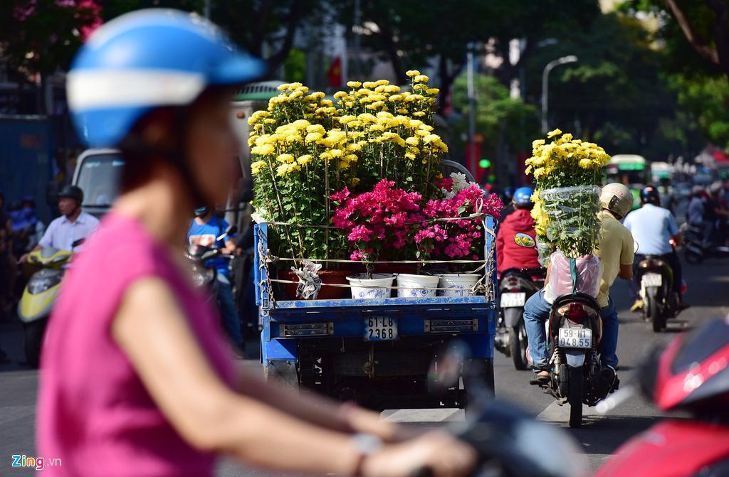 Đổ xô mua hoa Tết đại hạ giá ở trung tâm TP.HCM - Ảnh 16.