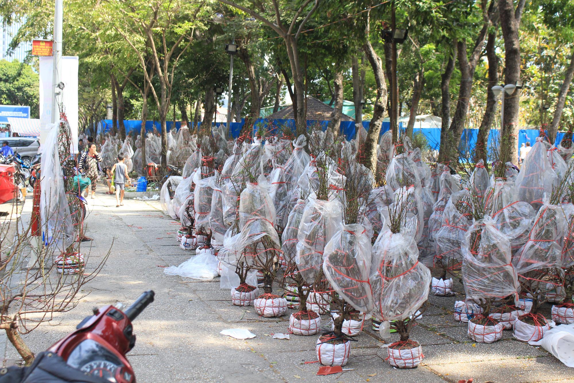 Đập nát hoa trước quăng lên xe rác ở Sài Gòn trưa 30 Tết - Ảnh 9.