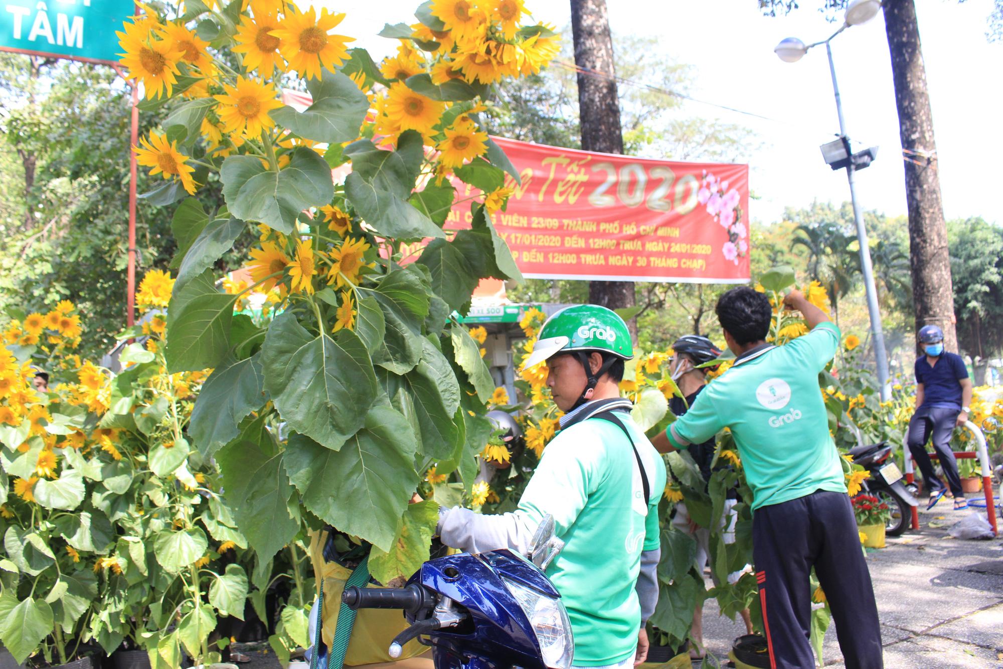 Trưa 30 Tết, mai, đào, hướng dương bán rẻ như cho 50.000 đồng một cây ở chợ hoa Sài Gòn - Ảnh 5.
