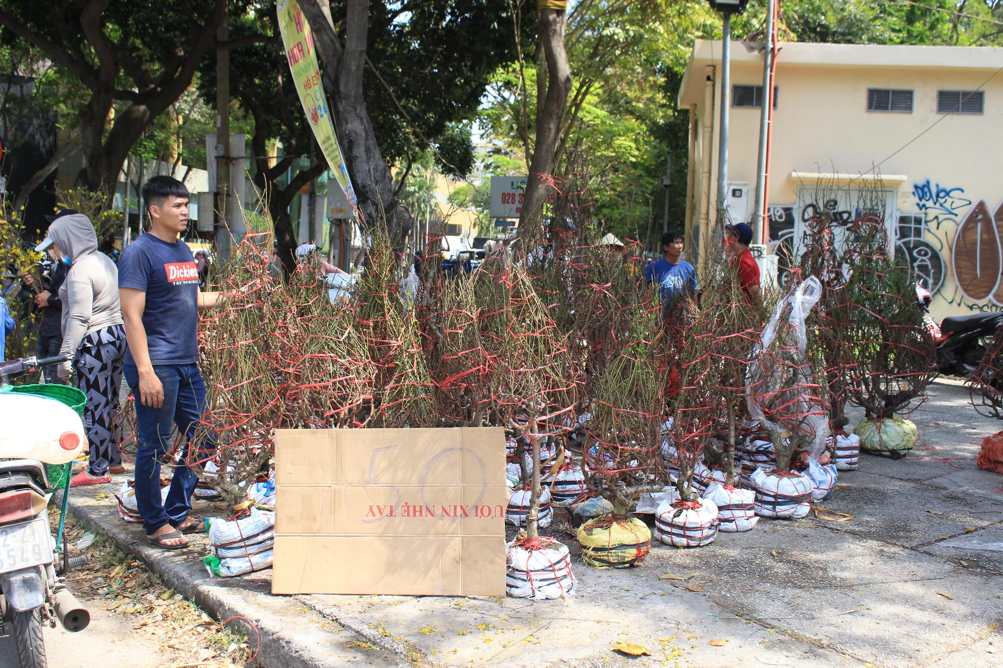 Trưa 30 Tết, mai, đào, hướng dương bán rẻ như cho 50.000 đồng một cây ở chợ hoa Sài Gòn - Ảnh 9.