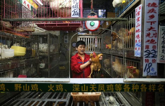 Bên trong khu chợ bùng phát virus corona tại Vũ Hán - Ảnh 11.