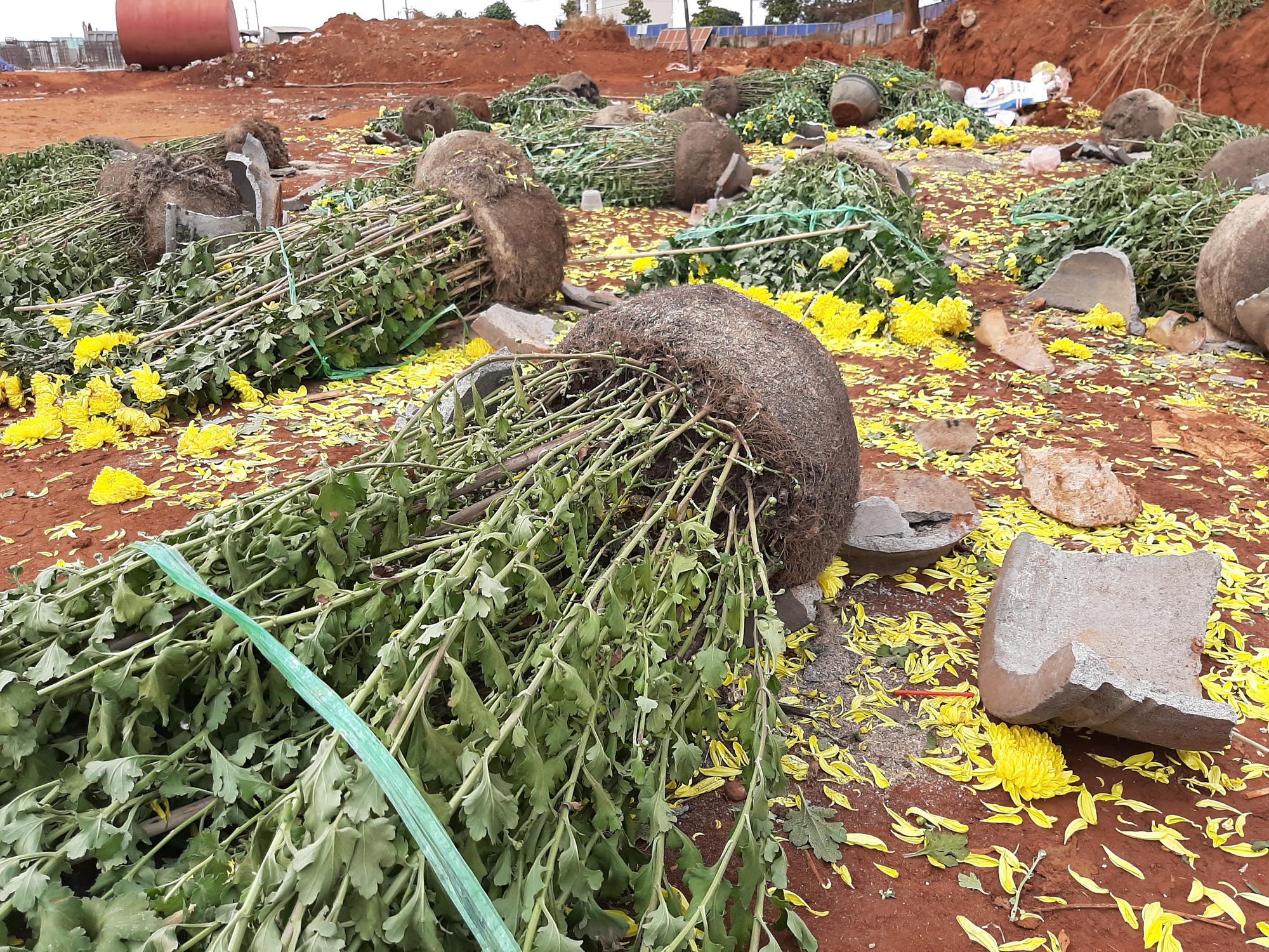 Chợ Tết như bãi chiến trường, đường phố ngập xác hoa - Ảnh 1.