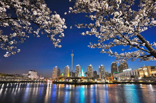 Gợi ý 5 địa điểm du lịch mùa xuân hấp dẫn tại Hàn Quốc - Ảnh 3.