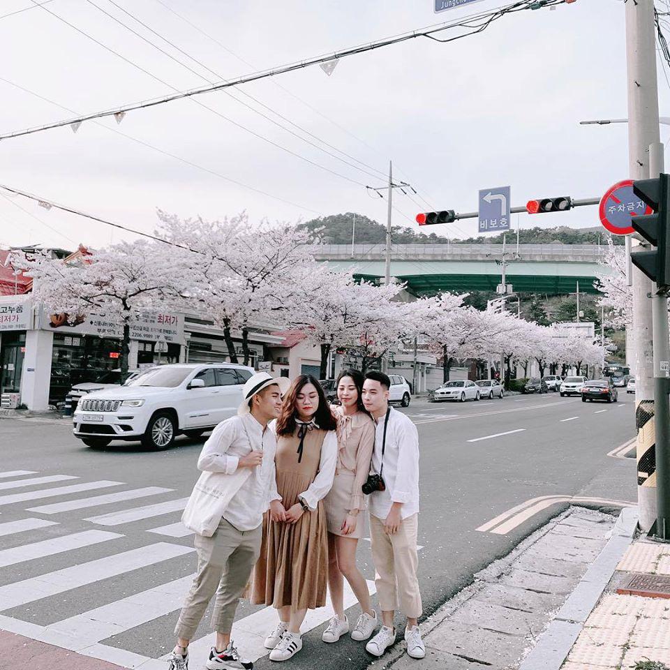 So sánh tour du lịch Hà Nội - Hàn Quốc mùa xuân 5 ngày 4 đêm - Ảnh 1.