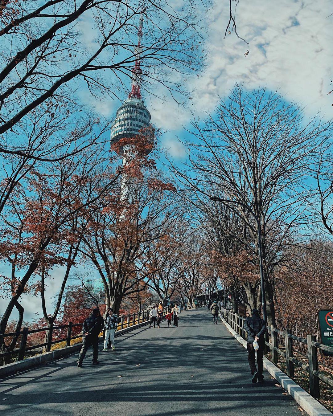 So sánh tour du lịch Hà Nội - Hàn Quốc mùa xuân 5 ngày 4 đêm - Ảnh 7.