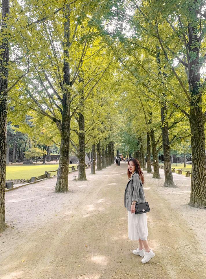 So sánh tour du lịch Hà Nội - Hàn Quốc mùa xuân 5 ngày 4 đêm - Ảnh 6.