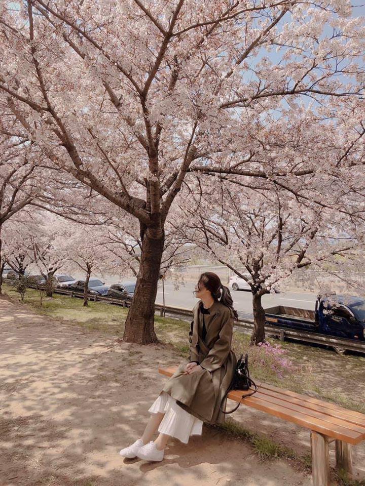 So sánh tour du lịch Hà Nội - Hàn Quốc mùa xuân 5 ngày 4 đêm - Ảnh 5.