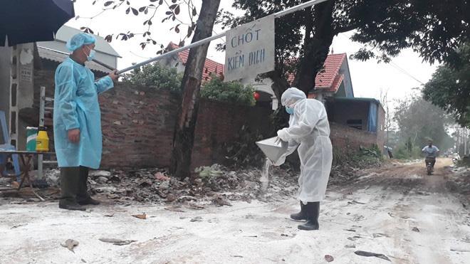 Cúm A/H5N6 trở lại, lệnh cấm bán tháo gia cầm ở vùng dịch - Ảnh 1.