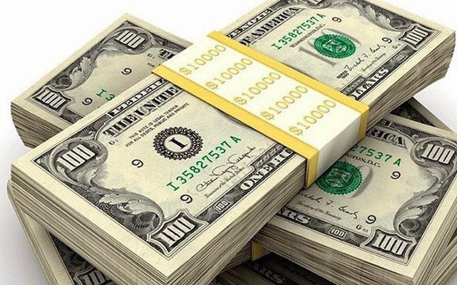 Giá USD hôm nay 15/2: Lên ngôi thời dịch bệnh  - Ảnh 2.