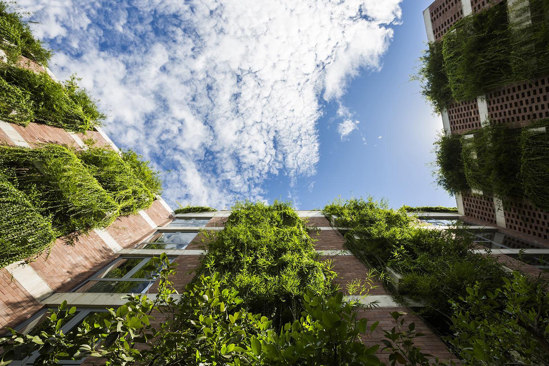 Tòa nhà 5 tầng 'siêu độc' phủ kín cây xanh ở Đà Nẵng, được báo Tây hết lời khen ngợi - Ảnh 2.