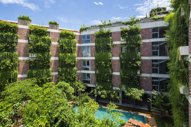 Tòa nhà 5 tầng 'siêu độc' phủ kín cây xanh ở Đà Nẵng, được báo Tây hết lời khen ngợi - Ảnh 1.