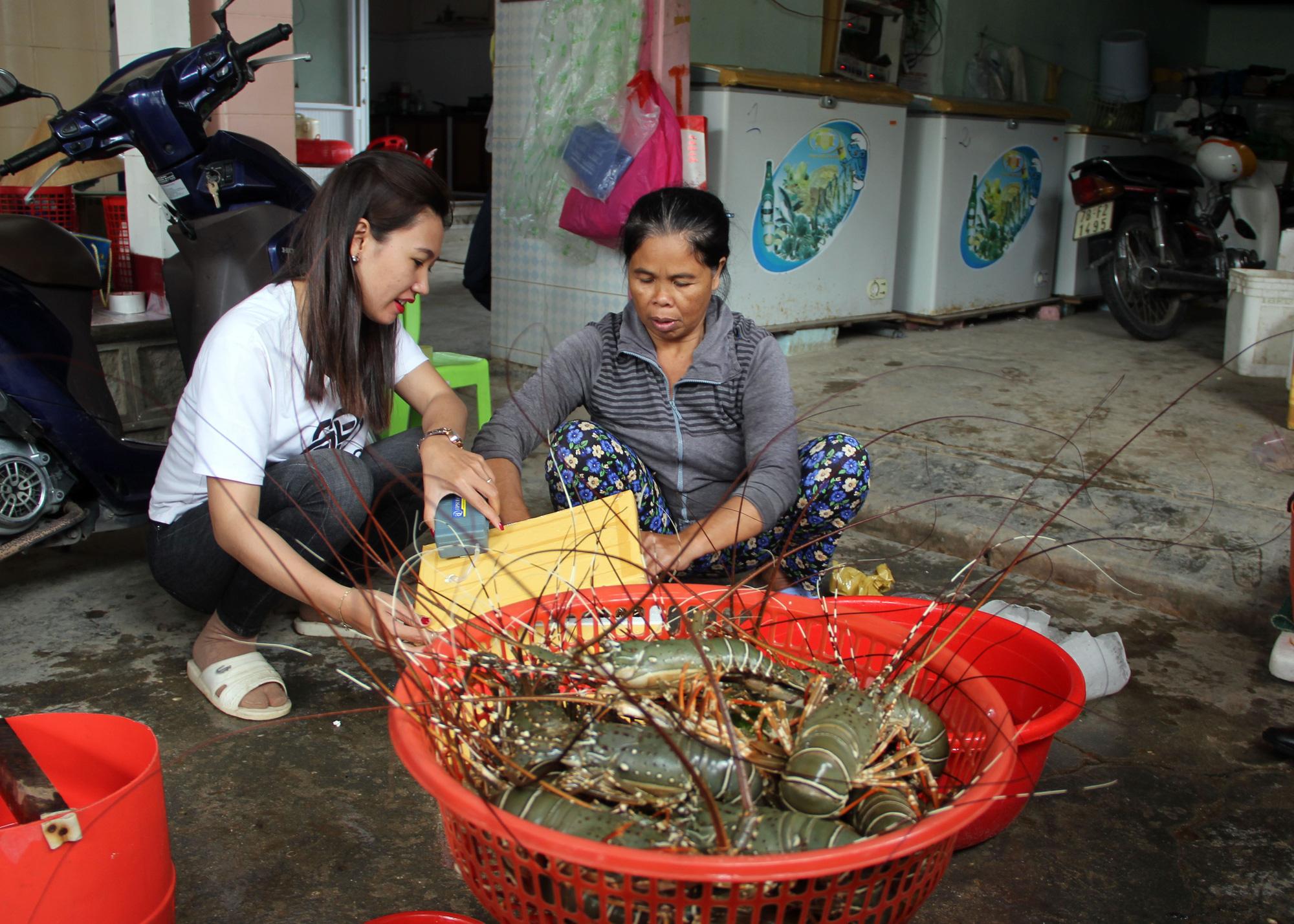 Sự thật về giá tôm hùm ở Phú Yên chỉ 200.000 đồng/kg - Ảnh 1.