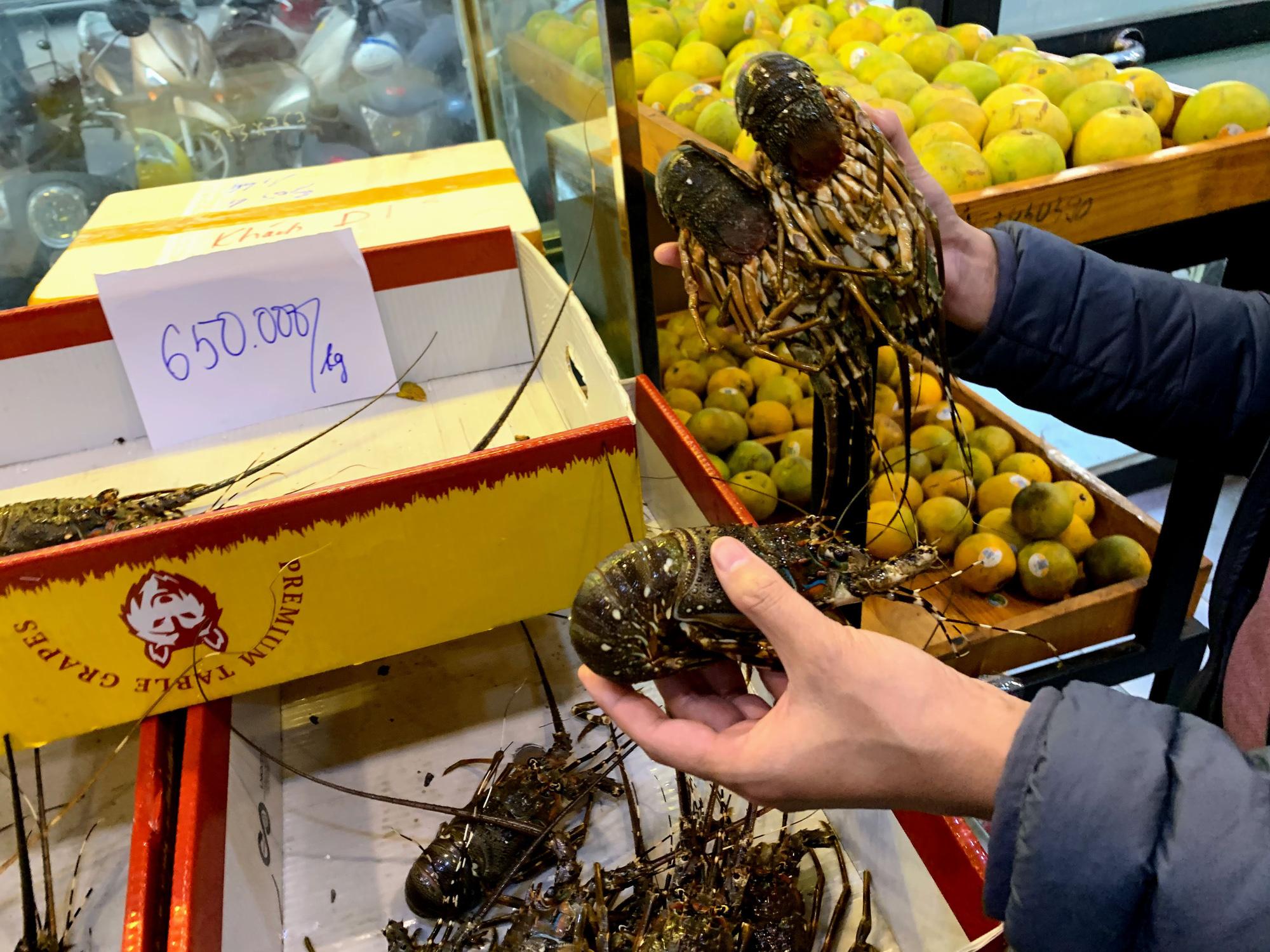 Người Hà Nội thức trắng đêm để canh mua tôm hùm trợ giá - Ảnh 4.