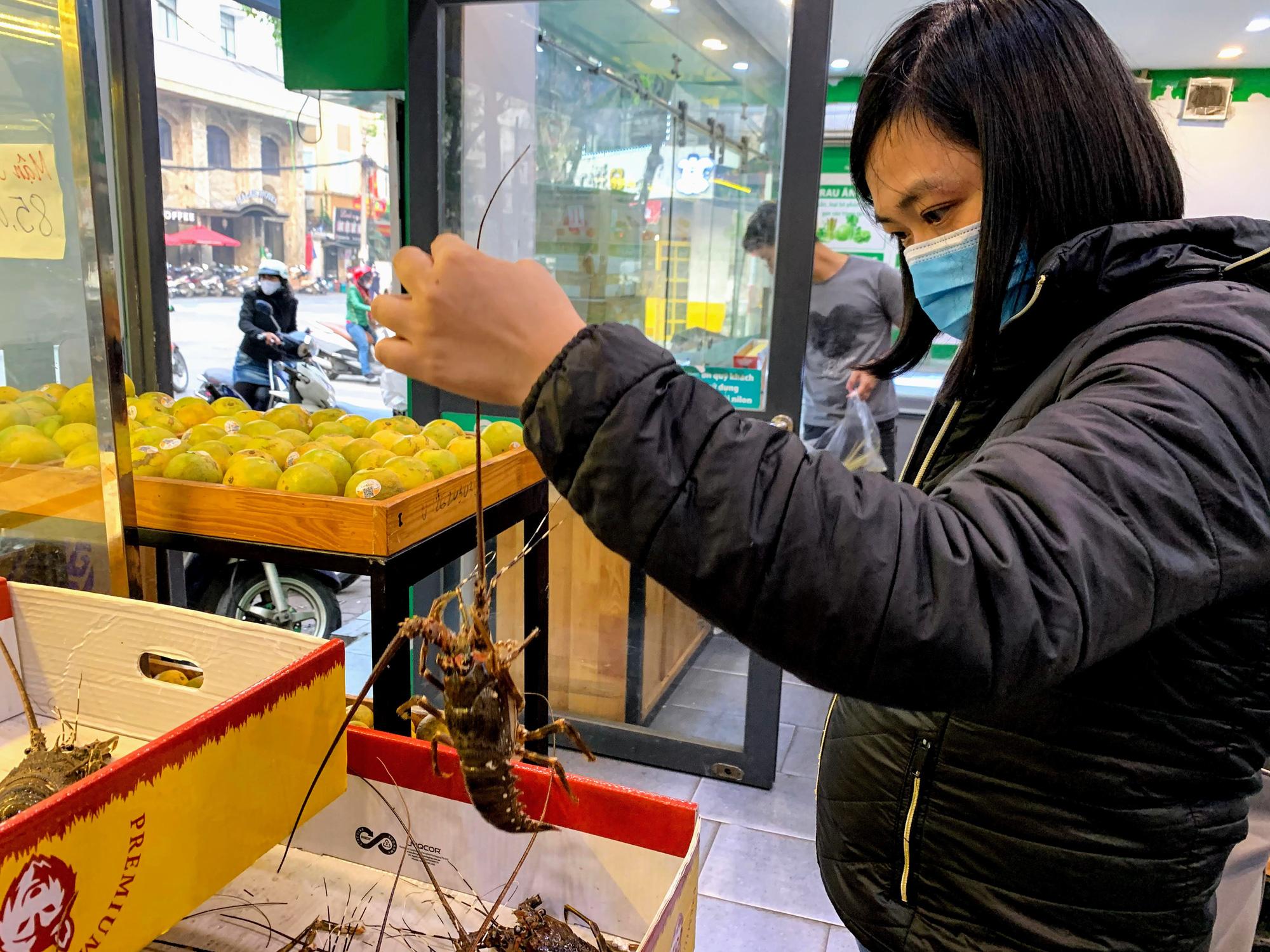Người Hà Nội thức trắng đêm để canh mua tôm hùm trợ giá - Ảnh 1.