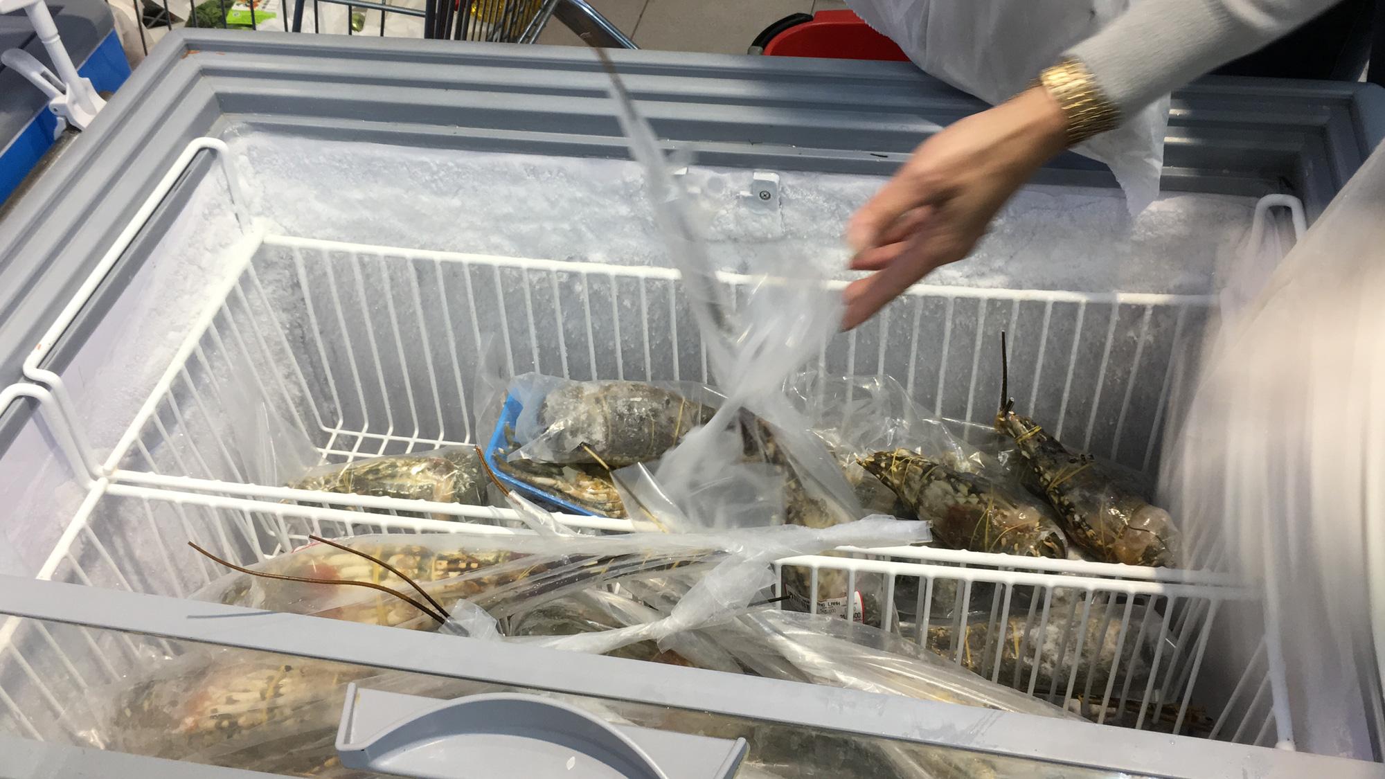 Giải cứu tôm hùm ở Đà Nẵng: Sức mua nhẹ, người dân muốn mua loại còn sống nhưng chỉ có hàng đông lạnh - Ảnh 4.
