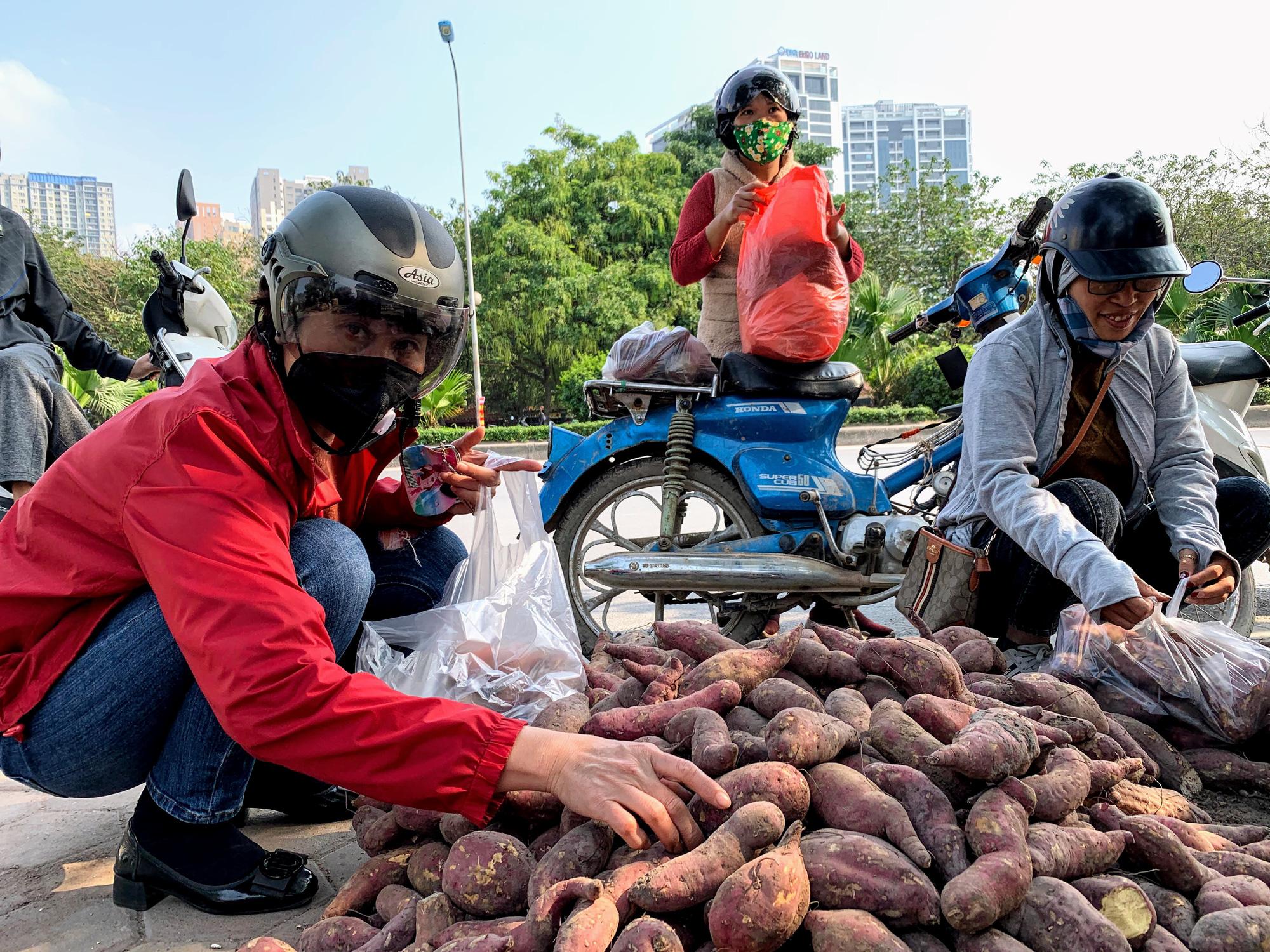 Hàng trăm tấn khoai lang nằm dài trên đường phố Hà Nội chờ 'giải cứu' - Ảnh 5.