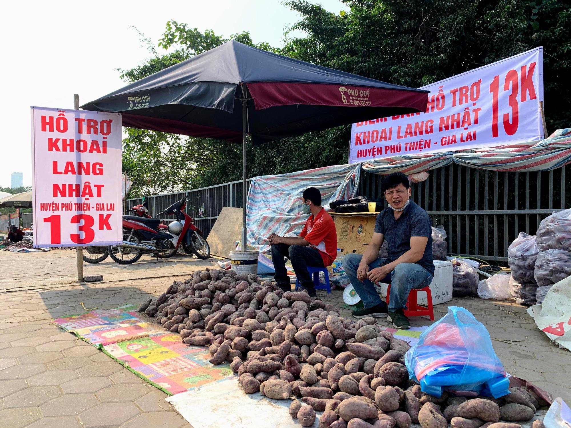 Hàng trăm tấn khoai lang nằm dài trên đường phố Hà Nội chờ 'giải cứu' - Ảnh 1.