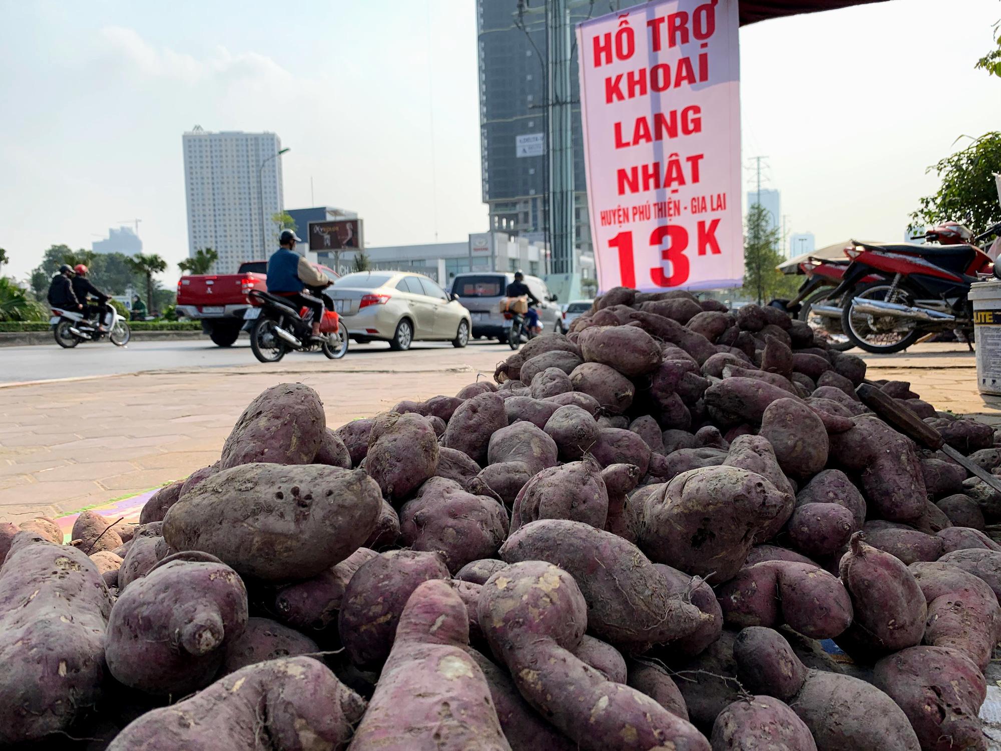 Hàng trăm tấn khoai lang nằm dài trên đường phố Hà Nội chờ 'giải cứu' - Ảnh 2.