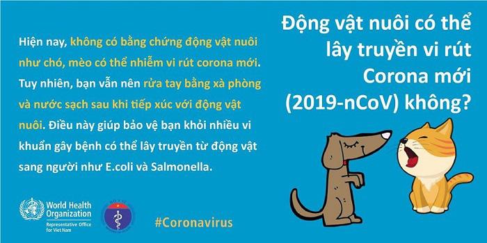 Kiến thức mới nhất về dịch virus corona (2019-nCoV) cần biết để phòng ngừa hiệu quả - Ảnh 14.