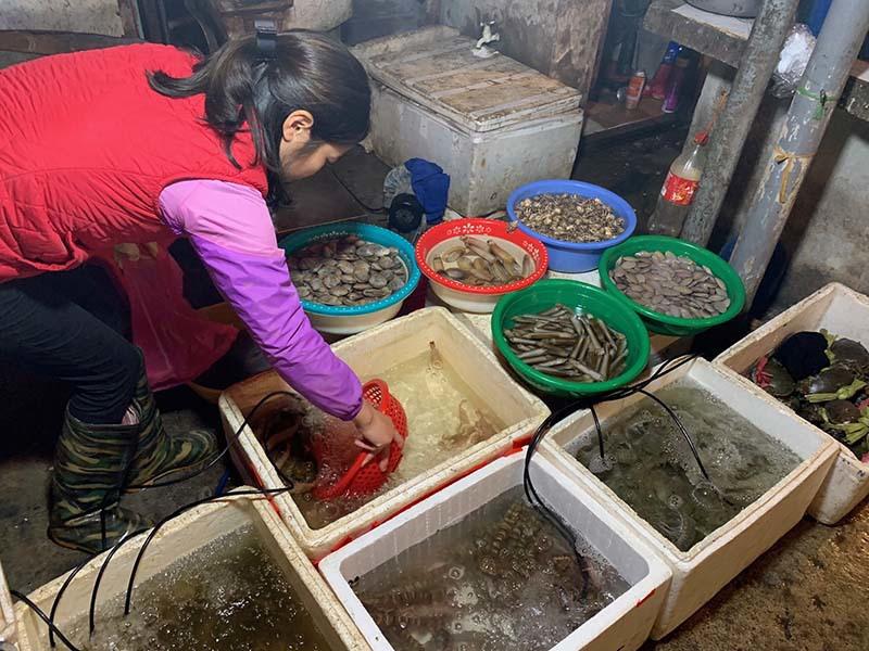 Chiêu bán hàng mới, chị bán rau, bà buôn cá bình thản mùa dịch - Ảnh 1.